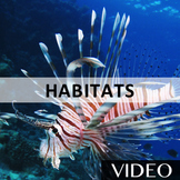 Habitats - Environment, Ecosystems, and Adaption Rap Video [2:54]