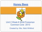 """Honey Bees"" Instructional Guide for Reading Street 2013"