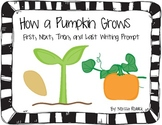 How a Pumpkin Grows: First, Next, Then, After, Finally