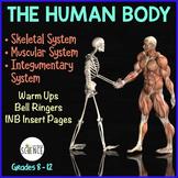 Human Body Interactive Notebooks, Warm Ups: Skeletal, Musc