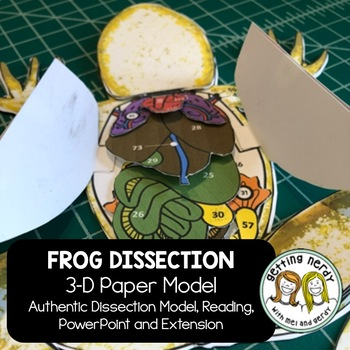 Frog Anatomy Interactive Notebook Paper Model for Dissection for Life Science