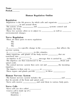 All Worksheets » Worksheets On Nervous System For Grade 5 - Free ...