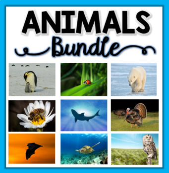 I Know About Animals BUNDLE: Nonfiction Units & Graphic Or