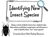 Identifying New or Unknown Insect Species ~ Classification Lab
