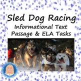 Iditarod Sled Dog Race: Common Core Reading Informational