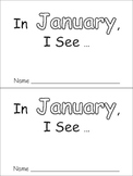 In January Emergent Reader Preschool Kindergarten Months o