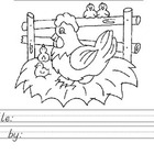 Informative Writing - Chickens