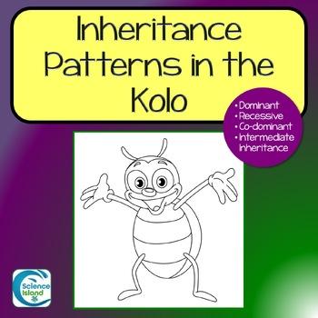 Inheritance Patterns in the Kolo - Genetics Activity