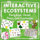 Interactive Ecosystems: Food Chains and Food Webs