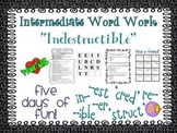 """Word Work and Vocabulary 5-Day Intermediate Unit """"INDESTRUCTIBLE"""""""