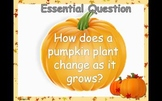 """Journey's Unit 2 Trade Book """"From Seed to Pumpkin"""" PowerPoint"""
