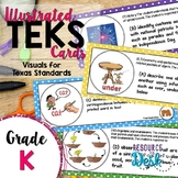 Kindergarten TEKS - Illustrated and Organized!