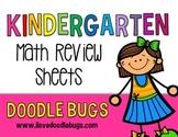 Kindergarten or Beginning First Grade Review Math Sheets