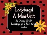 Ladybugs Mini Unit