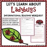 Ladybugs Internet Scavenger Hunt Reading Activity Common Core