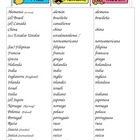 Las nacionalidades - Notes Page & Practice for Non-Spanish