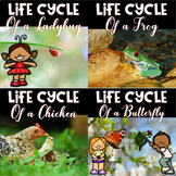 Life Cycle Bundle ~ 4 Life Cycle Units.