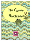 Life Cycles Brochures