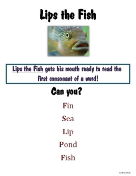 """Lips the Fish"" Decoding Packet"