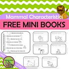 Mammal Characteristics FREEBIE