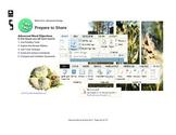 Microsoft Word 2013 Advanced: Prepare to Share