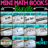 Mini Math Books Bundle