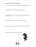 Molecule World DNA Binding Lab Worksheet for DNA Binding L