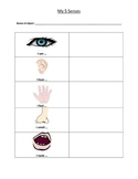 My 5 Senses Activity Sheet