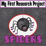 My First Research Project: Spiders