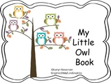 My Little Owl Book