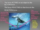 Newton's 3rd law of motion presenation