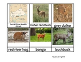 Nomenclature Cards - Animals - Africa - Central Africa Repulic