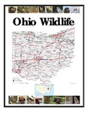 Ohio Wildlife and Environments