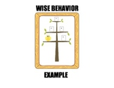 Owl Behavior Management