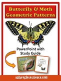 POWERPOINT & ACTIVITY GUIDE! Butterfly & Moth Geometric Patterns