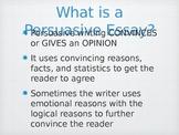 Persuasive Essay Start to Finish