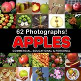 Photos Photographs APPLES clip art