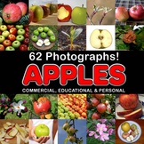 Photos Photographs APPLES clip art
