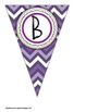 Pink, Green, and Purple Owl Themed Buntings- Customize You