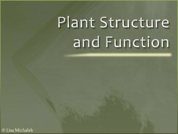 Plant Structure and Function PowerPoint Presentation Lesson Plan