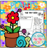 "Plants . . . ""Growing"" our knowledge of plants with a craf"