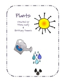 Plants, Plants and More Plants