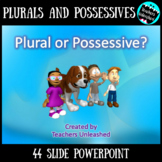 Plural or Possessive Noun