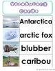 Polar Habitat for the Common Core Classroom