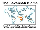 PowerPoint - The Savannah Biome