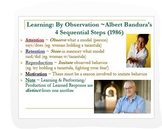 Psychology: Cognition/Learning Theories ~ Concise & Intera