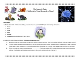 Psychology Collaborative Research Activity: The 5 Senses &