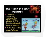 Psychology: Fight or Flight Response w/Critical Thinking P
