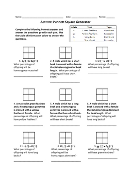 Punnett Squares Worksheets Pdf - punnett square worksheets pdf and ...
