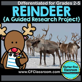 REINDEER Research